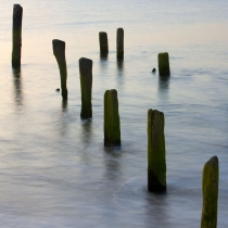 Cape May Pilings