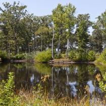 Lake at Ponder Lodge