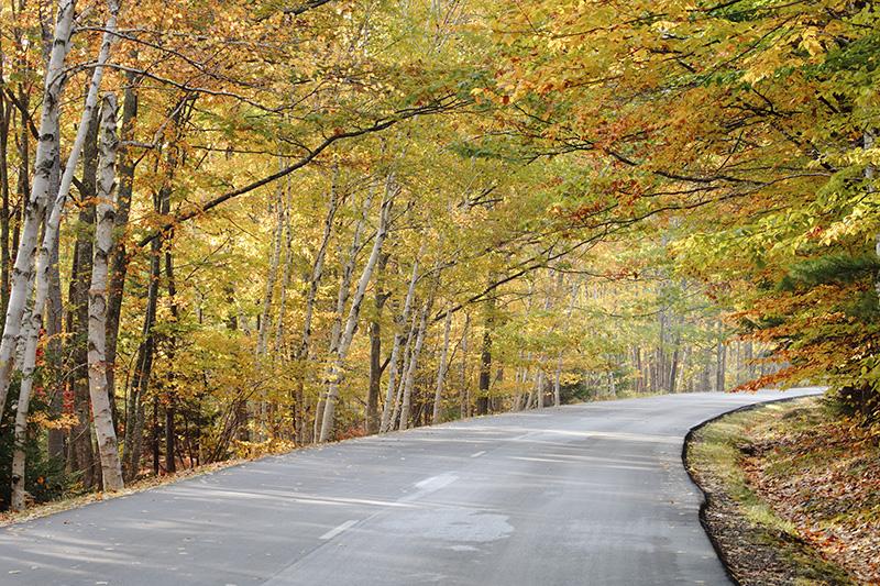 Acadia Roadway