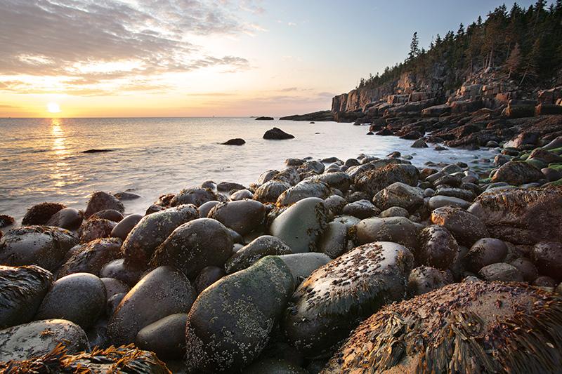 Acadia's Otter Point