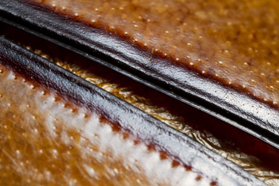 Bug-Abstract-1.jpg
