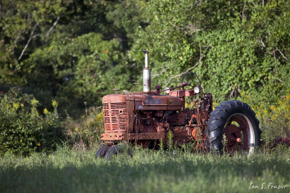 Old Tractor and Weeds