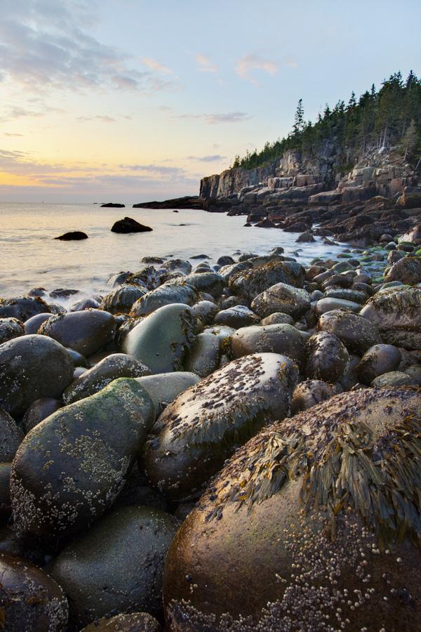 Maine-Coast-18.jpg