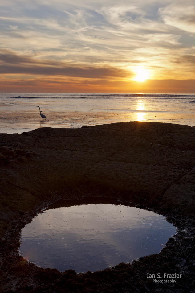 Reflections at Sunset Cliffs